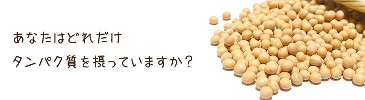 あなたはどれだけタンパク質を摂っていますか?