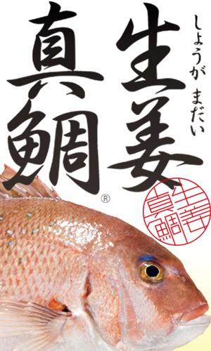 高知県産の生姜入り食事で育った生姜真鯛は、くさみがなくさっぱりと引き締まった味わいが特徴です。調理しやすいように鱗・鰓・腹を丁寧に処理した贅沢加工