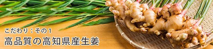 高品質の高知県産生姜