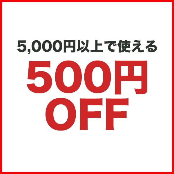 3日間限定★500円OFFクーポン