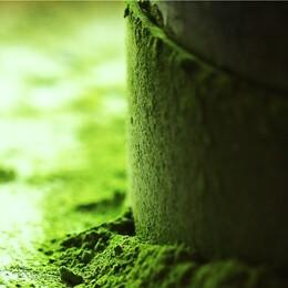 石臼挽き宇治抹茶(お濃茶)