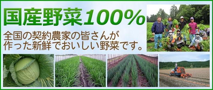 国産野菜100%