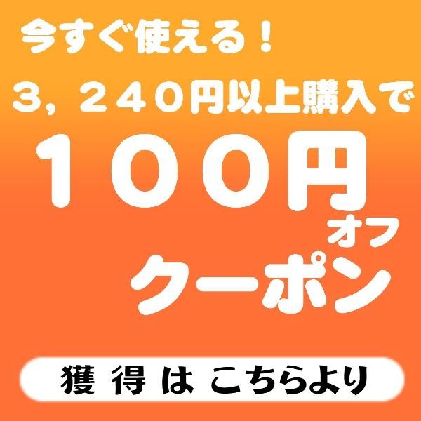 100円offクーポン!3,240円ご購入で!