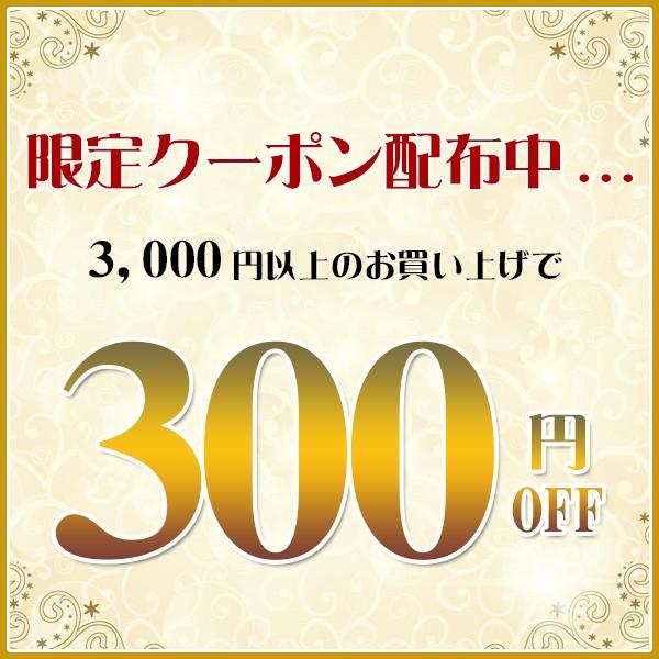 3,000円以上300円OFFクーポン!全商品対象!