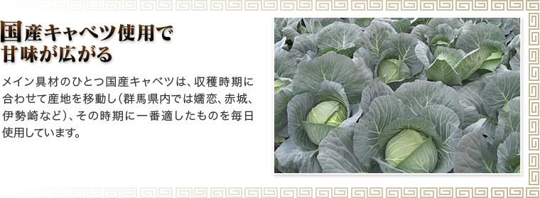 ネット限定野菜餃子