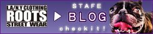 sns_blog