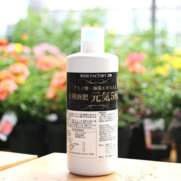 バラが元気がないときに!即効性のある液体肥料