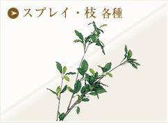 スプレイ・枝 各種