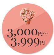 母の日3000円〜4000円以下