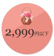 母の日3000円以下