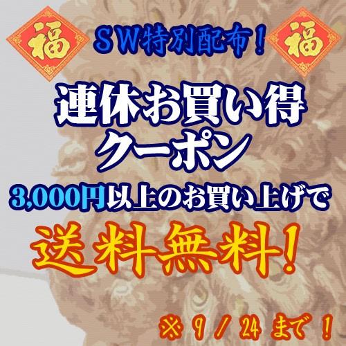 連休お買い得クーポン【3,000円以上なら送料無料!】