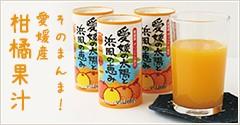 そのまんま!愛媛産柑橘果汁