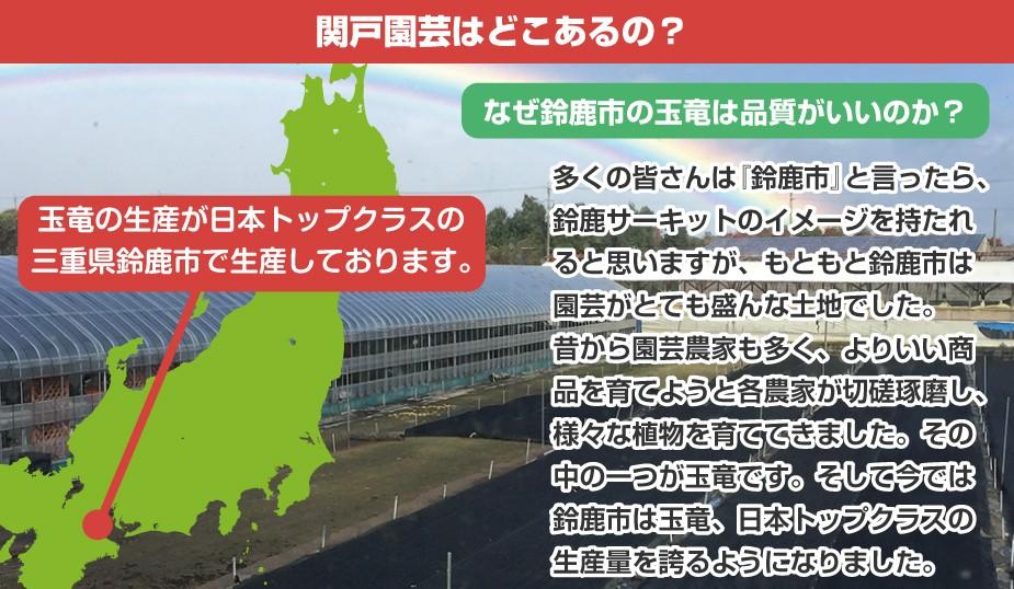 関戸園芸がある鈴鹿市がなぜ玉竜の生産量が日本トップクラスなのか?