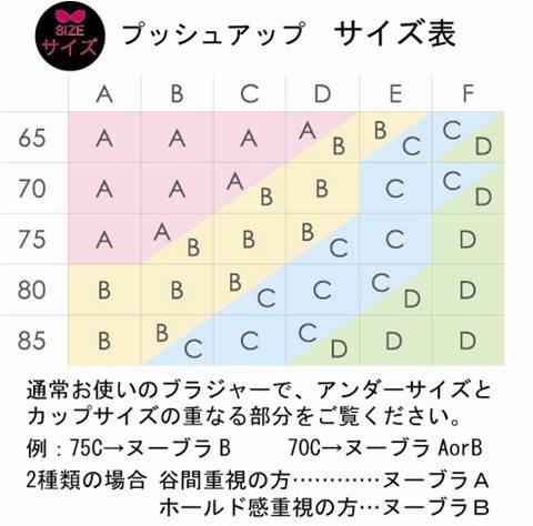ヌーブラ シームレスプッシュアップ 【送料無料】【正規品】
