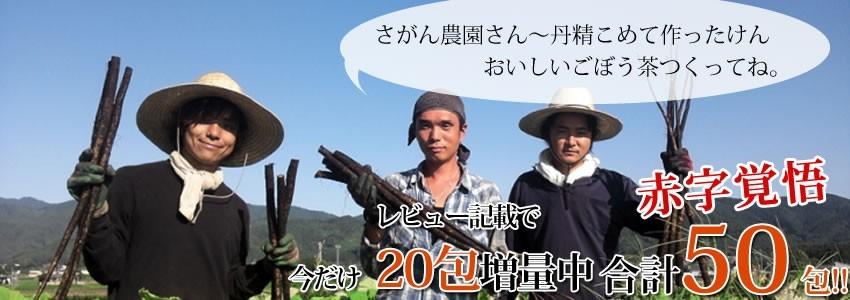 【レビュー記入で+20包増量中!合計50包】【送料無料】九州産ごぼう茶