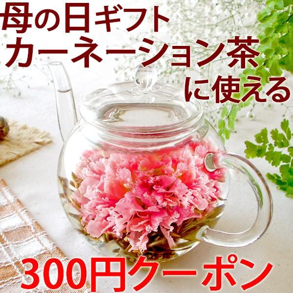 先着100名様【300円OFFクーポン】 カーネーション茶の母の日ギフトで使えるクーポンをご用意