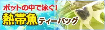 熱帯魚ティーバッグ
