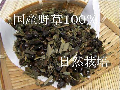 国産・野草茶・自然栽培・安心・安全
