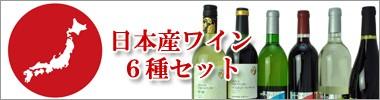 日本産ワイン6種セット