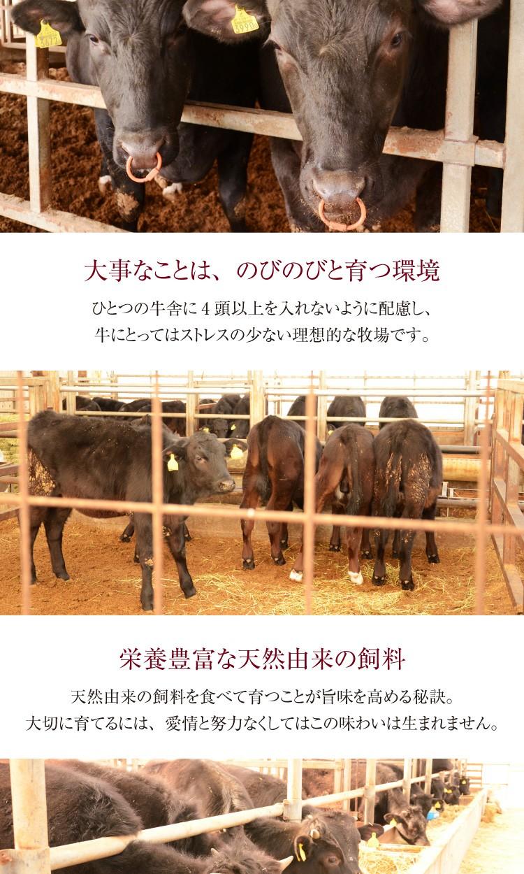 大事なことは、のびのびと育つ環境。ひとつの牛舎に4頭以上を入れないように配慮し、牛にとってはストレスの少ない理想的な牧場です。栄養豊富な天然由来の飼料天然由来の飼料を食べて育つことが旨味を高める秘訣。大切に育てるには、愛情と努力なくして、この味わいは生まれません。