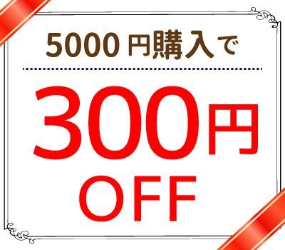 期間限定★全品対象!5000円以上ご購入で300円クーポン!