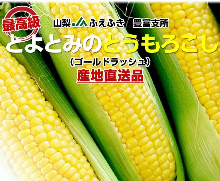 d_corn16_phb.jpg
