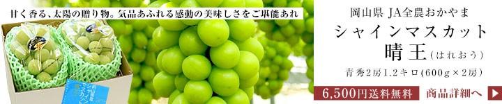 岡山 シャインマスカット