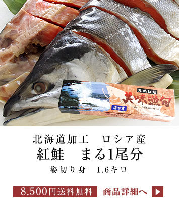 紅鮭 1尾姿切身