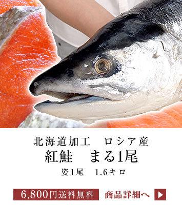 紅鮭まるごと