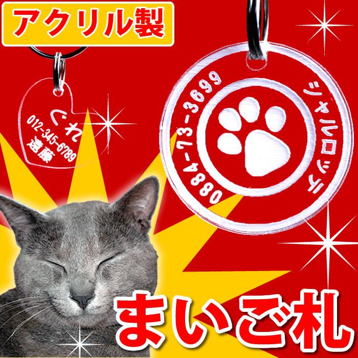 猫ちゃん迷子札