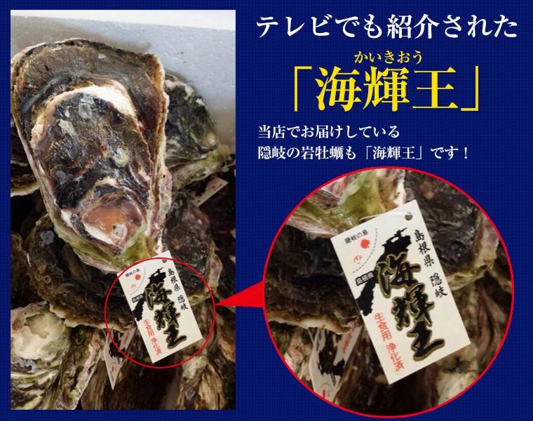 岩牡蛎 海輝王