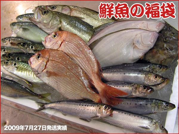 鮮魚の福袋