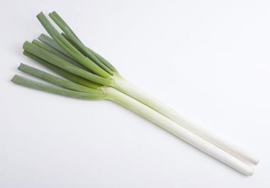 カニ鍋レシピ 白ネギ