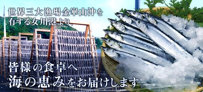 世界三大漁場金崋山沖を有する女川港より、皆様の食卓へ海の恵みをお届けします。