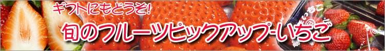 旬のフルーツピックアップ-いちご