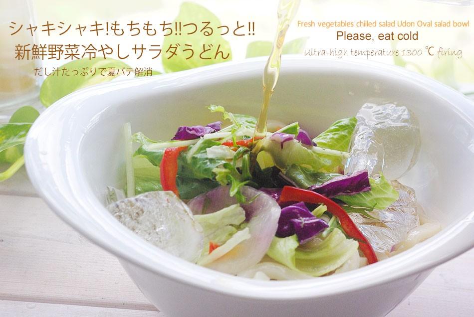 新鮮野菜冷やしサラダうどん