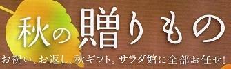 シャディ サラダ館 の おすすめ秋冬ギフト!