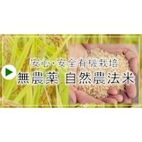 無農薬・自然農法米