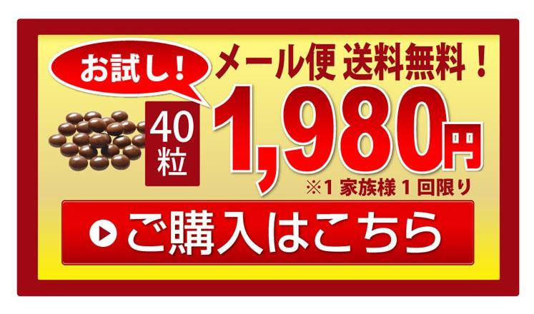 お試し 40粒1980円