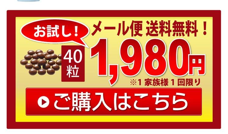 お試し価格40粒1980円