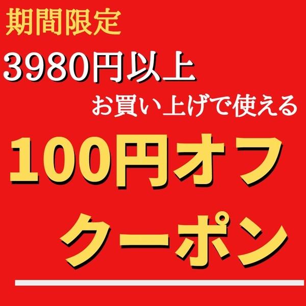 3980円以上お買い上げで100円オフクーポン