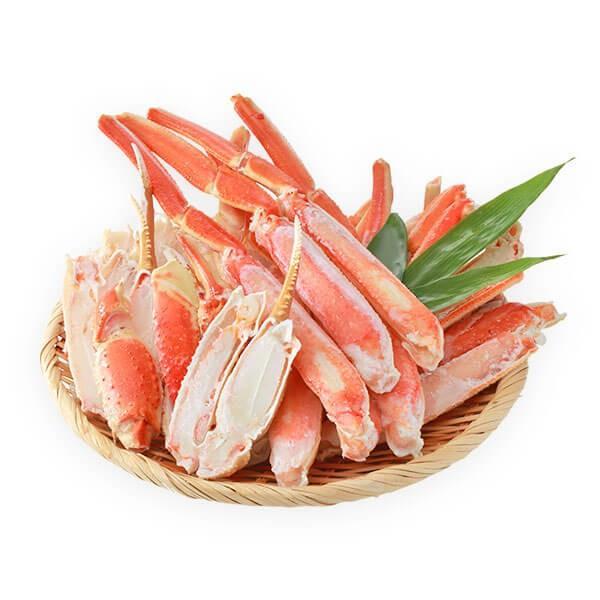 蟹 ズワイガニ ハーフポーション 1.6kg セット|seafoodhonpo88|15