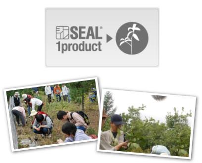 SEAL(シール)の活動
