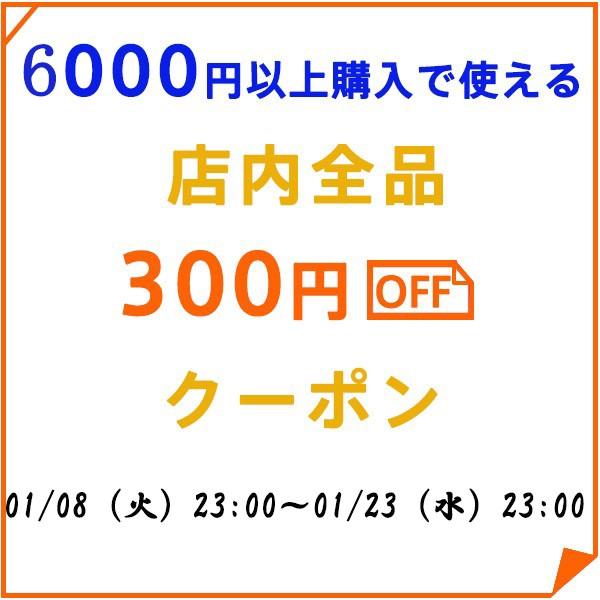 6000円以上購入で300円OFF