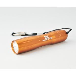LEDライト LED懐中電灯 小型 軽量 防災・防犯・ウォーキング・ジョギング アウトドアキャンプ 登山 強力・高輝度 ハンディライト キーホルダー|secu|10