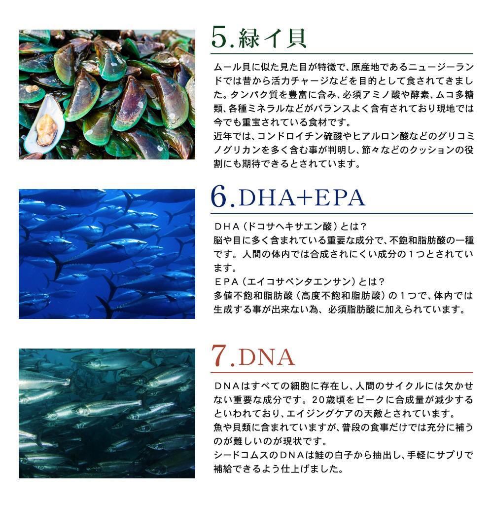 c9a87201a8b サプリ サプリメント 海のチカラ 約3ヵ月分 DHA EPA アカモク フコ ...