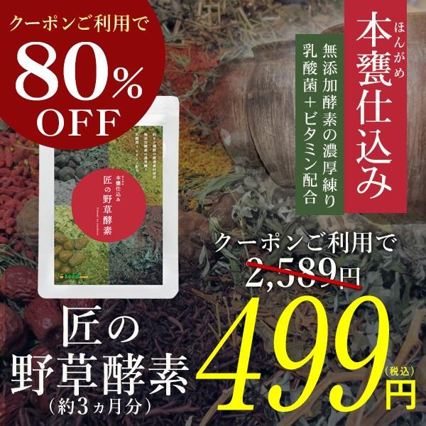"""【新発売】練り酵素を使用した""""匠の野草酵素""""がクーポンで499円"""