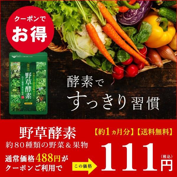 野草酵素 約1ヵ月分がクーポンで111円!