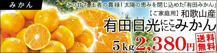 有田日光みかん5kg