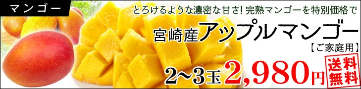 宮崎産大玉マンゴー